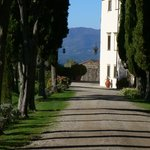 The driveway to Villa Campestri