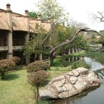 ジャングルクルーズ風の中庭