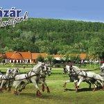 Lazar Equestrian Park
