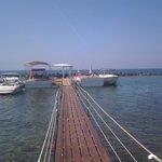 Paphos watersports