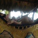 Our hammock area