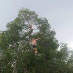 Fishing trip with tree climbing