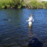 Pescando en el Malleo