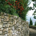 walk from San Vigilio down to Upper Bergamo