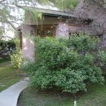 2 Bed Suite / House