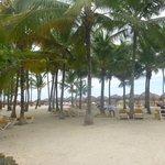 beach on dominicana side