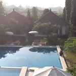 het zwembad met gedeelte tuin