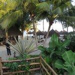 bains de soleil sur l'avant plage