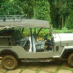 Jeep used to carry visitors to the guest house