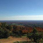 Carter Mountain in Charlottesville, VA