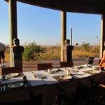 petit déjeuner devant la savane