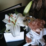 Fresh flowers in the room with teddy bear!