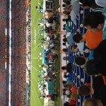 41 yard line behind Dolphin bench