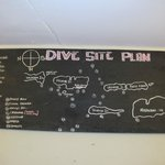 Dive board - detailed plans, great dive operation