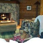Nice wood burning fireplace