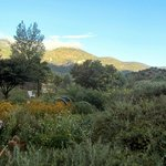 View over the organic garden and into the roughed, mountainous landscape