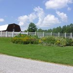 Barn and Arena