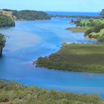 Puhoi River Canoe Hire Ltd Kayak Trips