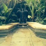 jacuzzi fountain! beautiful!!