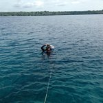 off diving