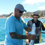Mick unhooking to free small reef shark