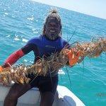 Lobster Kabob