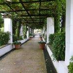 Walkway to the Belvedere pool