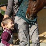 l'amore del mio cucciolo per i cavalli