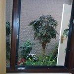 пространство каменного колодца декорировано искусственными растениями