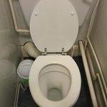 Clean toilets.
