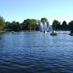 Pedalinhos no lago