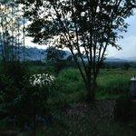 Foto de Pai Park Cottage