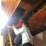 Roof Cellar
