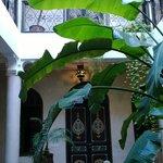 Ground floor atrium/ courtyard