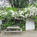 The Chelsea Pensioners' Garden
