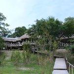 The Amazon Research Centre