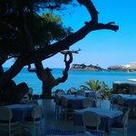 Ouzerie Sani Beach Club
