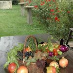 Vegetables and fruit from our garden/fields