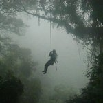 Tarzan Swing!  One of the 14 platforms on the canopy tour.