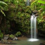Juan Diego Falls