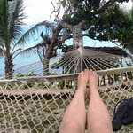 Off the hammocks