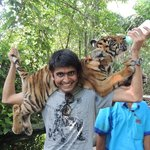 Me with a baby tiger