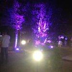 jardin éclairé