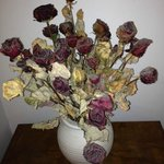 dead and dirty flowers used as decoration at a corner next to corridor/staircase