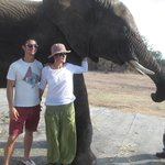 Mom and I with one of the elephants
