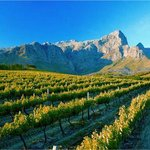 The stunning Franschhoek mountains