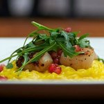 Safrom risotto with scallops