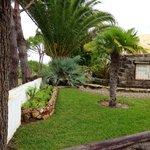 Hotel garden ,