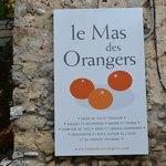 Photo of Le mas des orangers