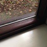 Mould on inside of window frame
